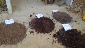 堆肥づくり研修に参加しました